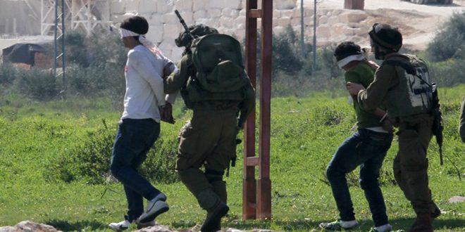 دستگیری 5 فلسطیینی در کرانه باختری