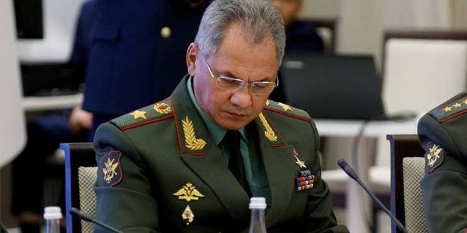 Shoigu calls for finding a political solution to crisis in Syria