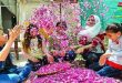 The Damascene Rose inscribed on UNESCO Intangible Cultural Heritage of Humanity list