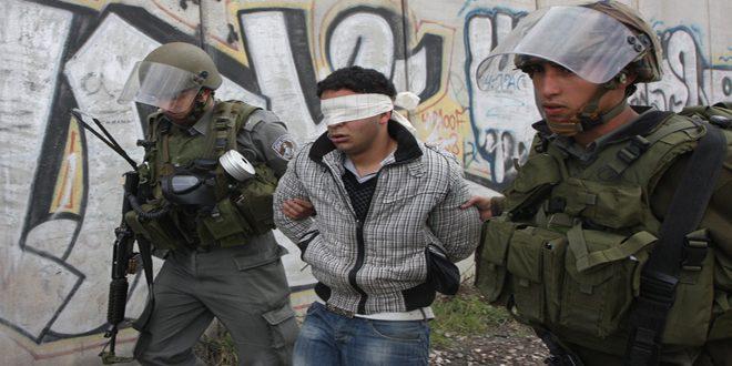 Occupation forces arrest a Palestinian in Jenin