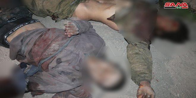 Ejército sirio elimina a ocho terroristas y asegura por completo la carretera entre Deir Ezzor y Palmira