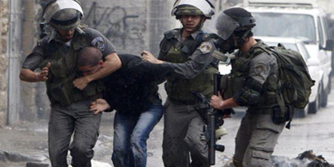 بازداشت 4 فلسطینی در الخلیل توسط نیروهای اشغالگر اسرائیلی