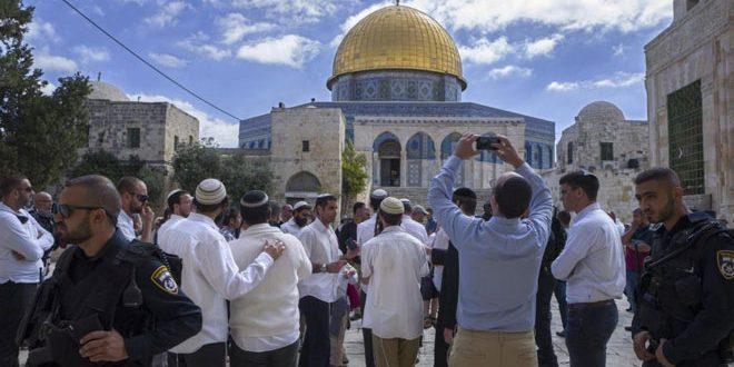 یورش مجدد شهرک نشینان به مسجد الاقصی تحت حمایت نیروهای اشغالگر اسرائیل