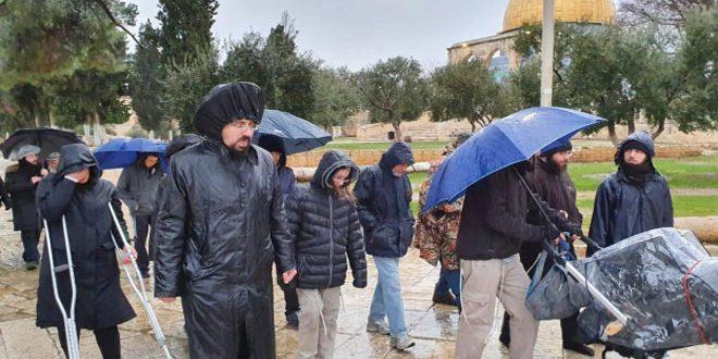 یورش ده ها شهرک نشینان به مسجد الاقصی تحت حمایت نیروهای اشغالگر اسرائیل