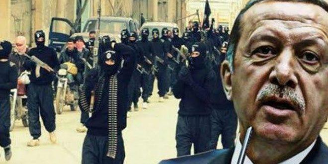 خبرنگار سانا: ادعای اردوغان کذب و غیر واقعی است