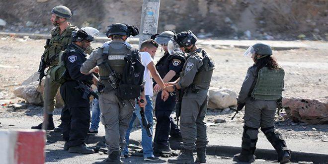بازداشت /11/ فلسطینی در کرانه باختری از سوی نیروهای اشغالگر