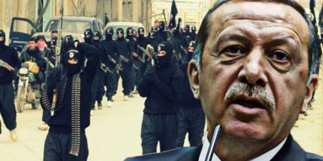 یک روزنامه نگار چک: اردوغان و مزدورانش مرتکب جنایات جنگی در سوریه شده است