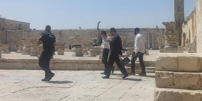 یورش ده های شهرک نشینی بار دیگر به مسجد اقصی