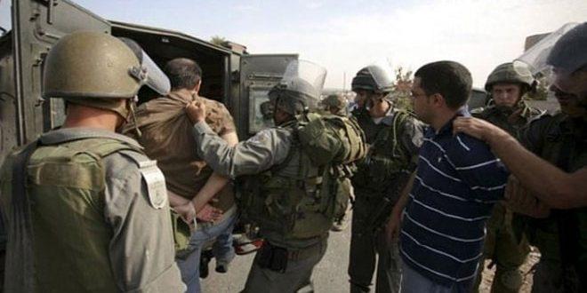 دستگیری 11 فلسطینی توسط نیروهای اشغالگر در گرانه باختری