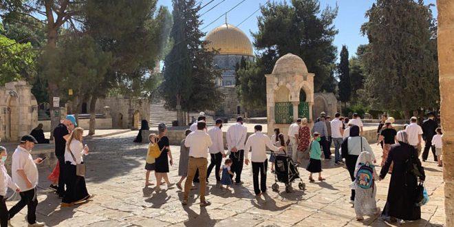 یورش صدها شهرک نشین به مسجد الاقصی