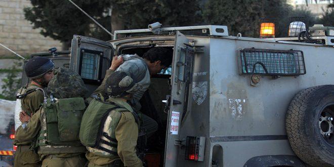 بازداشت 8 فلسطینی توسط نیروهای اشغالگر در کرانه باختری