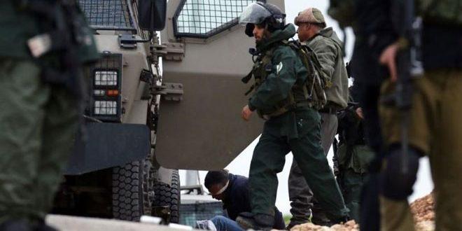 بازداشت 3 فلسطینی توسط نیروهای اشغالگر در کرانه باختری