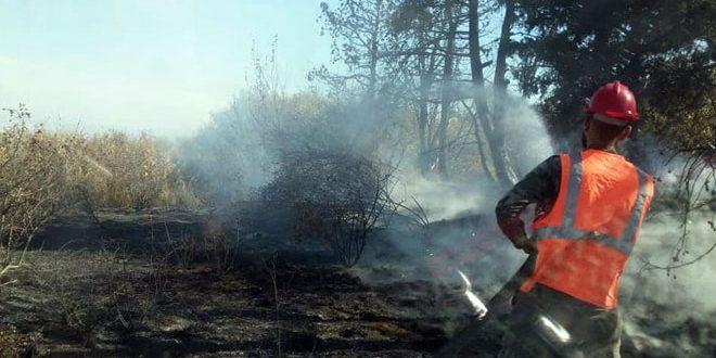 """اطفای یک آتش سوزی در اراضی کشاورزی روستای """"رباح"""" در حومه استان حمص"""