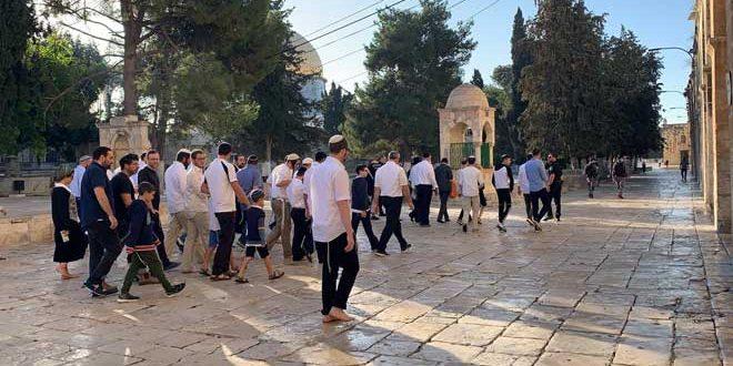 یورش ده ها شهرک نشین صهیونیست به مسجد الاقصی