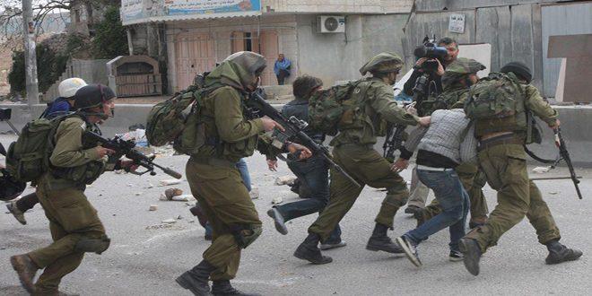 """אש""""ף הדגיש כי הכוחות הישראליים הרגו 44 פלסטינים ופצעו 500 אחרים בחודש שעבר"""