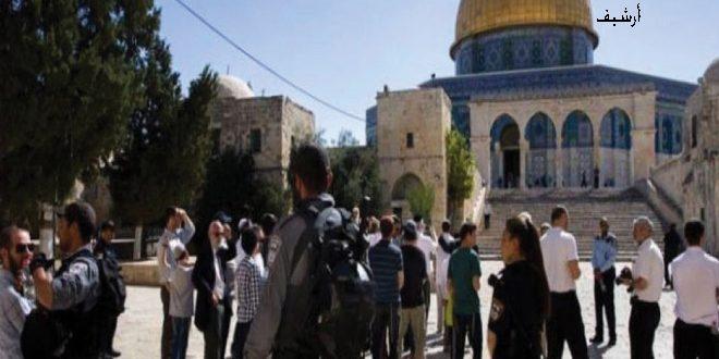 עשרות מתנחלים מחדשים את פריצתם למסגד אלאקצא באבטחת הכיבוש