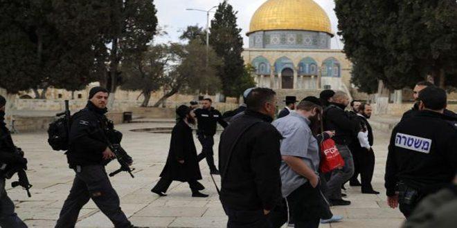 עשרות מתנחלים חזרו על פשיטתם על מסגד אל-אקצא