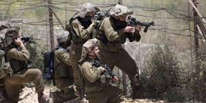 כוחות הכיבוש חידשו את התקפת החקלאים הפלסטינים בדרום רצועת עזה