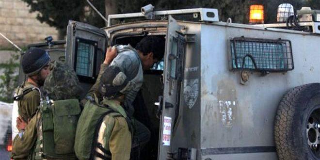 כוחות הכיבוש עצרו 13 פלסטינים בגדה המערבית