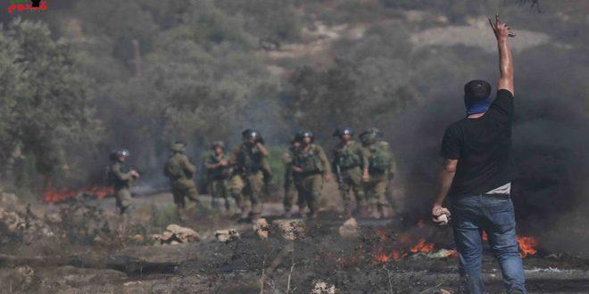 עשרות פלסטינים לקו בחנק במהלך דיכוי הפגנת כפר קדום