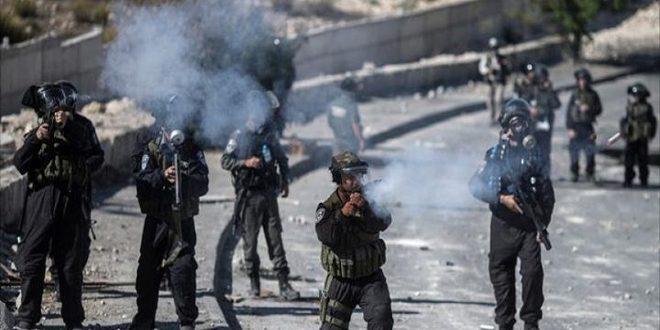 פציעת מספר פלסטינים כתוצאה לתקיפות כוחות הכיבוש נגד החקלאים צפונית לחברון