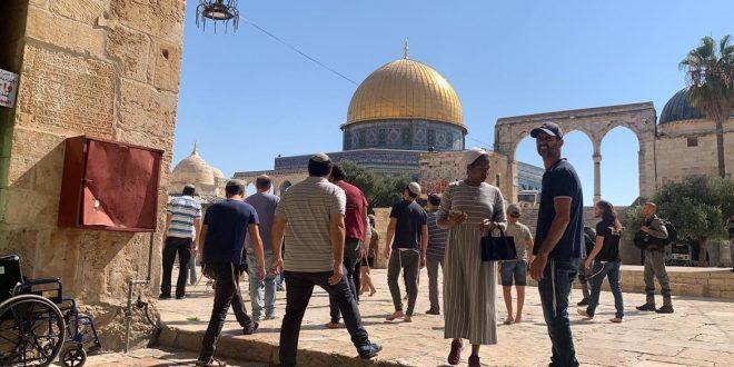 עשרות מתנחלים פרצו לתוך מסגד אלאקצה תחת אבטחתם של הכוחות הישראליים