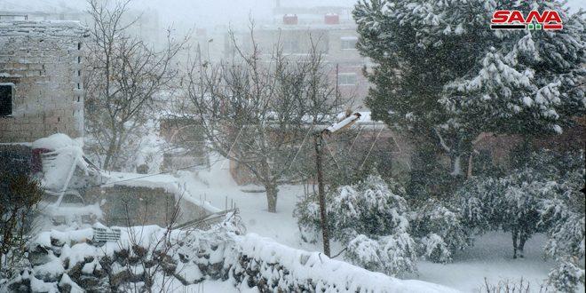 В провинции Сувейда выпал снег