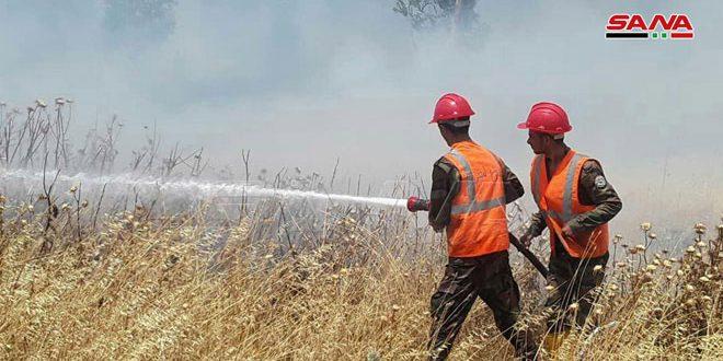 В различных районах провинции Хомс потушены пять пожаров