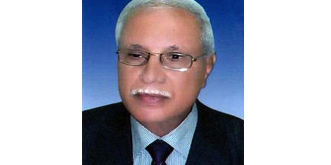 سياسي مصري: صمود سورية في مواجهة الإرهاب حمى المنطقة بأسرها