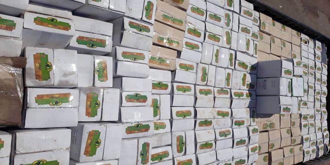 مصادرة نحو 10 أطنان زيت زيتون باللاذقية لنقص في المواصفة