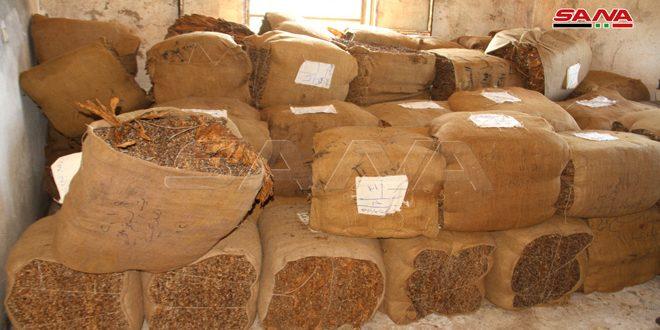 إعفاء مزارعي التبغ من غرامة قيمة العجز
