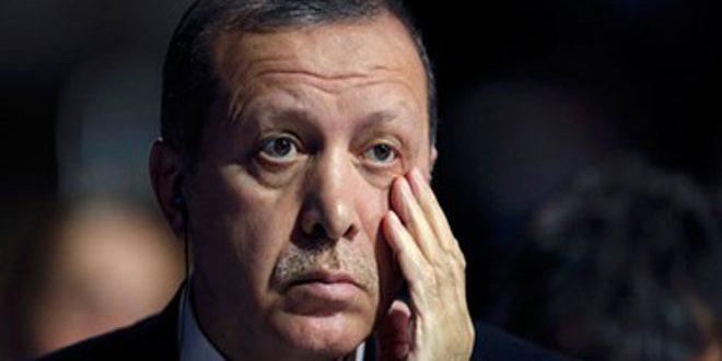 بلاغ للنائب العام المصري يطالب بإدراج أردوغان على قوائم مجرمي الحرب