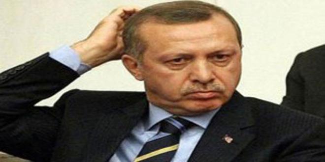 صحفي تركي: أردوغان لا يلتزم بتعهداته وهو مستمر بدعم الإرهابيين في إدلب