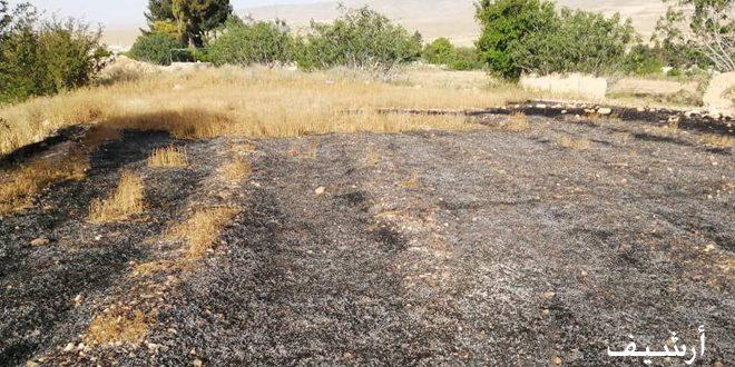 إخماد ثمانية عشر حريقاً اندلعت في أراض زراعية وحراجية بدرعا