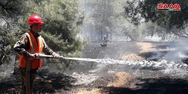 إخماد حريقين على طريق حمص تدمر وفي واحة بساتين تدمر التاريخية