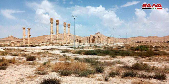 إنجاز المرحلة الثانية من مشروع صيانة وتأهيل الإنارة في المنطقة الأثرية بتدمر