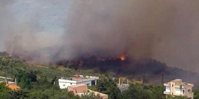 إخماد حريق نشب في أراض حراجية في العيسوية بريف اللاذقية