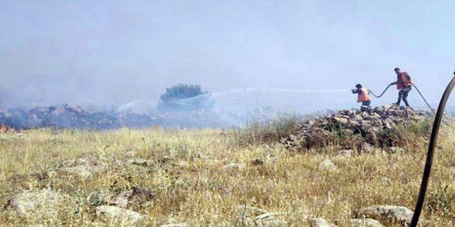 إخماد عدد من الحرائق بالسويداء طال بعضها أشجاراً مثمرة ومحاصيل حقلية