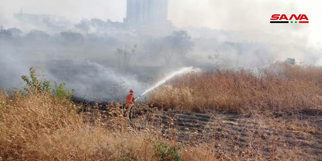 إخماد حرائق عدة طالت أشجاراً مثمرة وأعشاباً يابسة في حمص