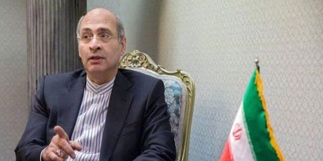إيران تؤكد رفضها القرار الجديد للمجلس التنفيذي لمنظمة حظر الأسلحة الكيميائية حول سورية