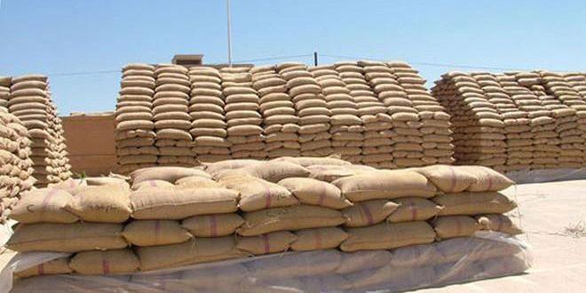 أعلاف السويداء تبيع أكثر من 6200 طن من المواد العلفية خلال 6 أشهر