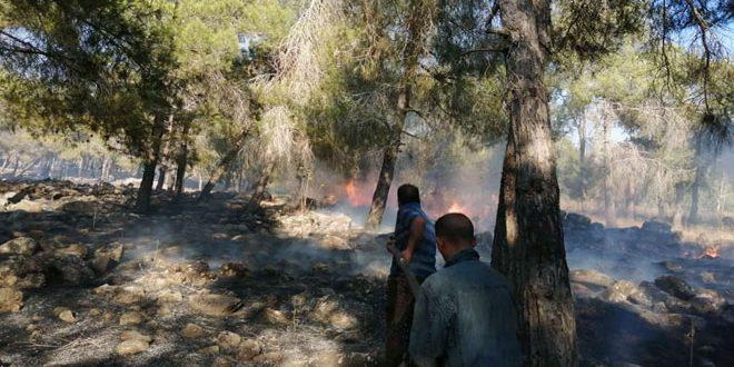 إخماد حريق في تل الجابية بريف درعا