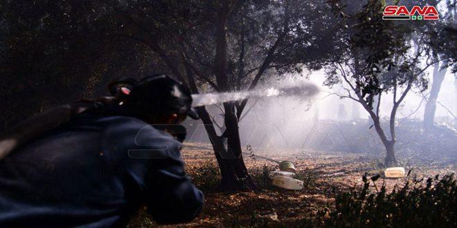 نشوب حريق بأعشاب يابسة في منطقة الديماس
