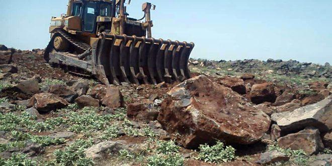 استصلاح وتجهيز أكثر من 2900 دونم من الأراضي بالسويداء لاستثمارها بالزراعة