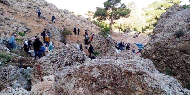 حملة لزراعة أشجار اللزاب في جبال يبرود